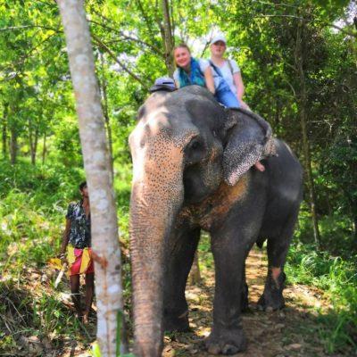 Туры с Самиром по Шри Ланке